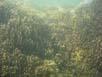 Steine von Hindang in 4 Metern Tiefe